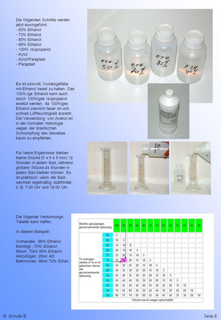 R. Schulte ©Seite 8 Die folgenden Schritte werden jetzt durchgeführt: - 50% Ethanol - 70% Ethanol - 85% Ethanol - 95% Ethanol - 100% Isopropanol - Xyl