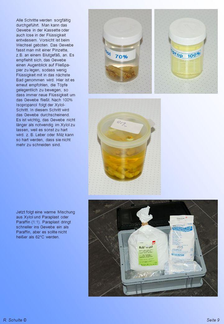 R. Schulte ©Seite 9 Alle Schritte werden sorgfältig durchgeführt. Man kann das Gewebe in der Kassette oder auch lose in der Flüssigkeit entwässern. Vo