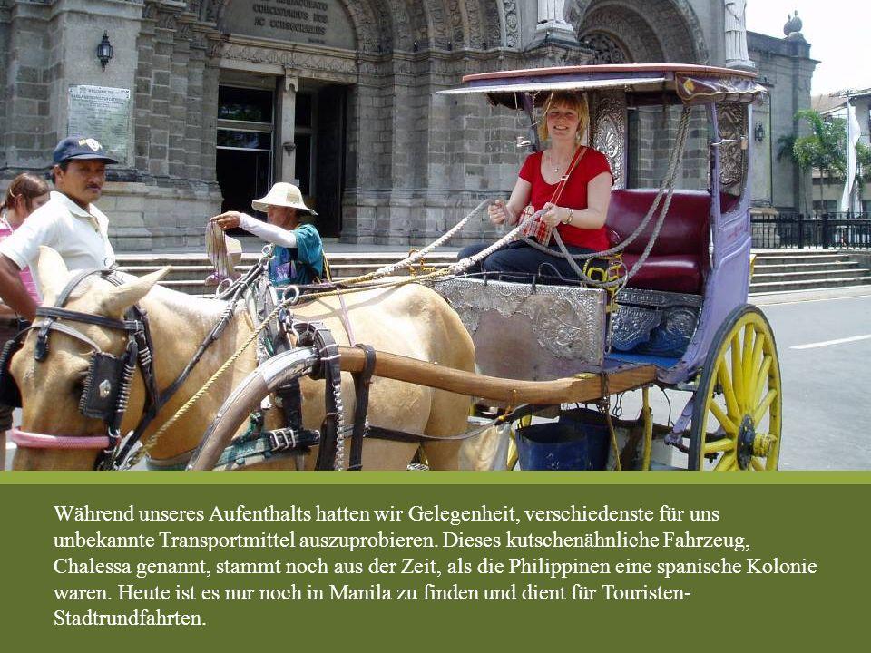 Während unseres Aufenthalts hatten wir Gelegenheit, verschiedenste für uns unbekannte Transportmittel auszuprobieren. Dieses kutschenähnliche Fahrzeug