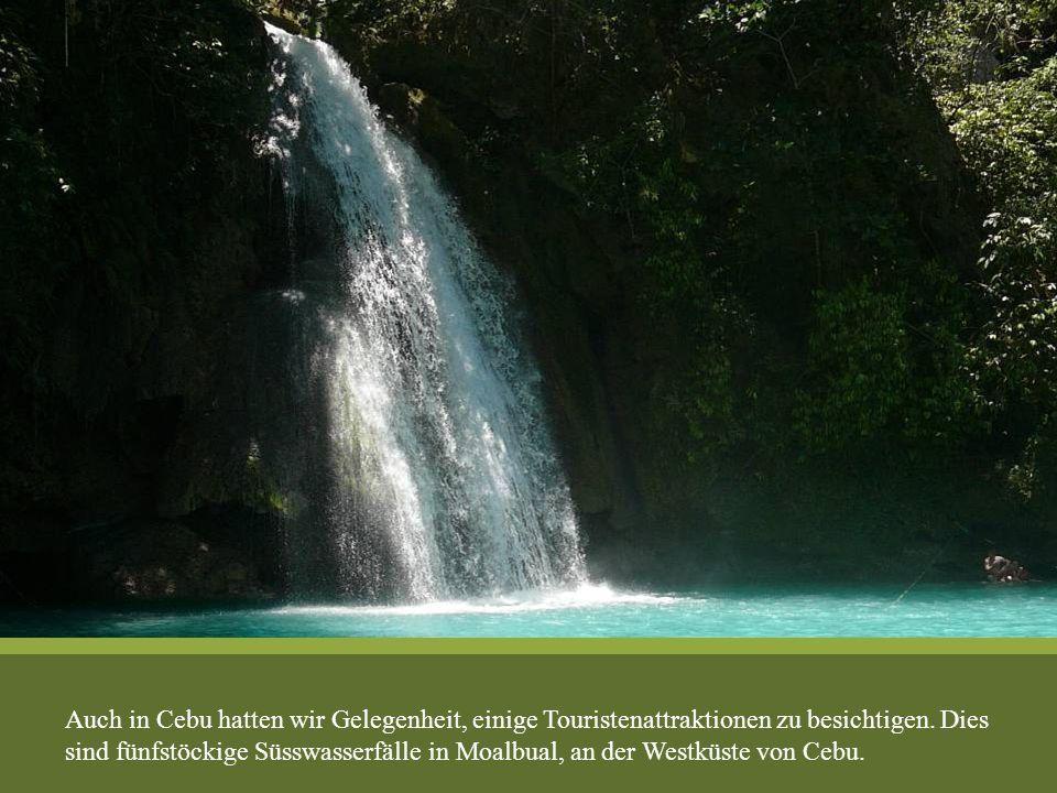 Auch in Cebu hatten wir Gelegenheit, einige Touristenattraktionen zu besichtigen. Dies sind fünfstöckige Süsswasserfälle in Moalbual, an der Westküste