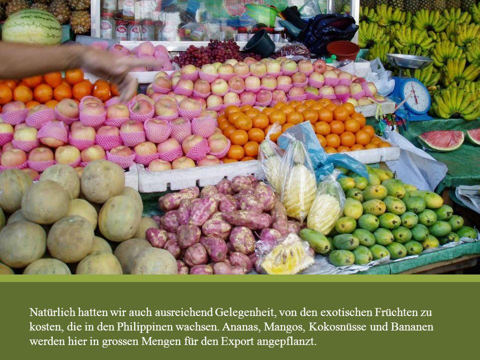 Natürlich hatten wir auch ausreichend Gelegenheit, von den exotischen Früchten zu kosten, die in den Philippinen wachsen. Ananas, Mangos, Kokosnüsse u