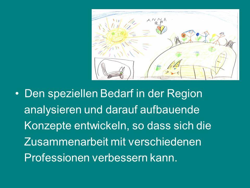 Den speziellen Bedarf in der Region analysieren und darauf aufbauende Konzepte entwickeln, so dass sich die Zusammenarbeit mit verschiedenen Professionen verbessern kann.