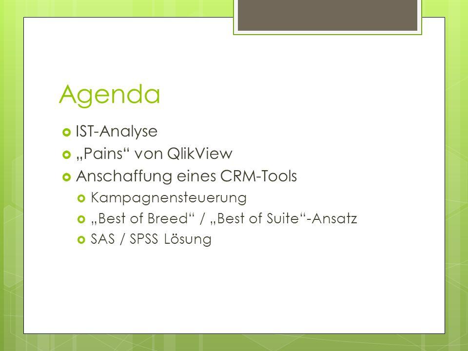 Agenda IST-Analyse Pains von QlikView Anschaffung eines CRM-Tools Kampagnensteuerung Best of Breed / Best of Suite-Ansatz SAS / SPSS Lösung