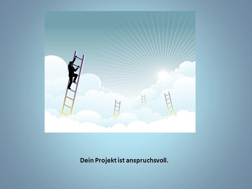 Dein Projekt ist anspruchsvoll.