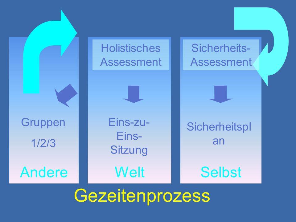 SelbstWeltAndere Holistisches Assessment Sicherheitspl an Eins-zu- Eins- Sitzung Gruppen 1/2/3 Sicherheits- Assessment Gezeitenprozess