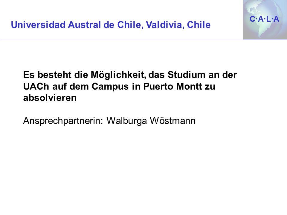 C·A·L·AC·A·L·A Es besteht die Möglichkeit, das Studium an der UACh auf dem Campus in Puerto Montt zu absolvieren Ansprechpartnerin: Walburga Wöstmann