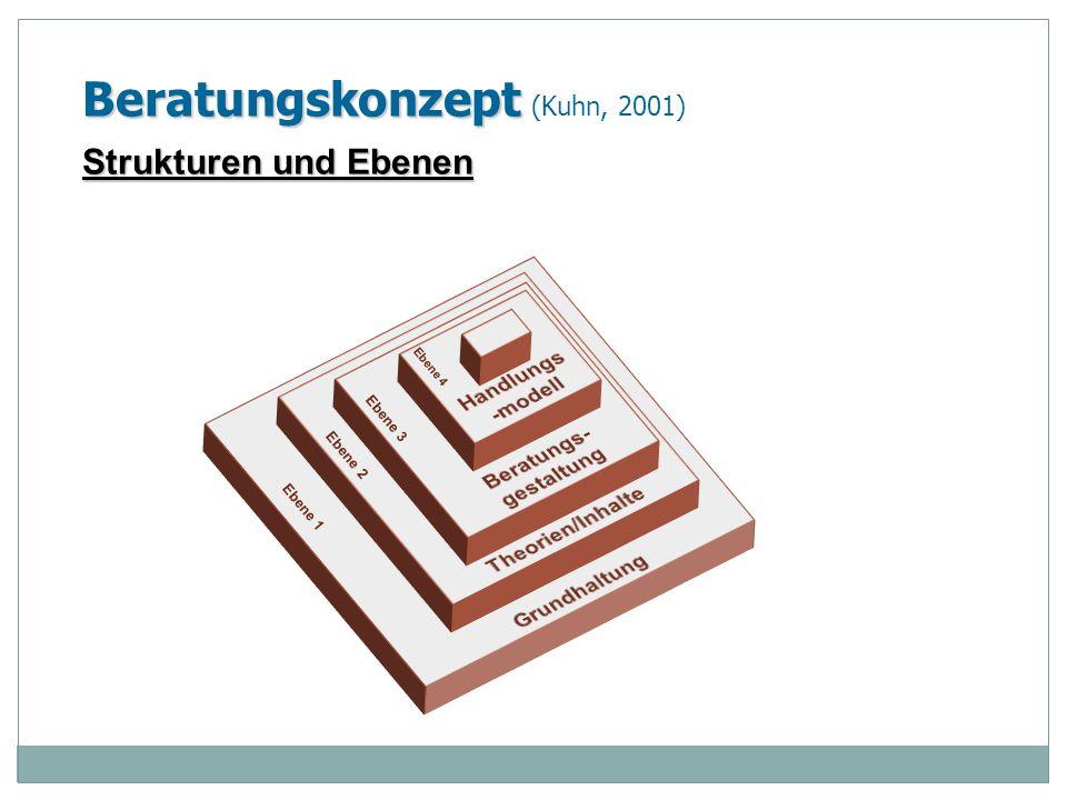 Ebene 1 Ebene 2 Ebene 3 Ebene 4 Beratungskonzept Beratungskonzept (Kuhn, 2001) Strukturen und Ebenen