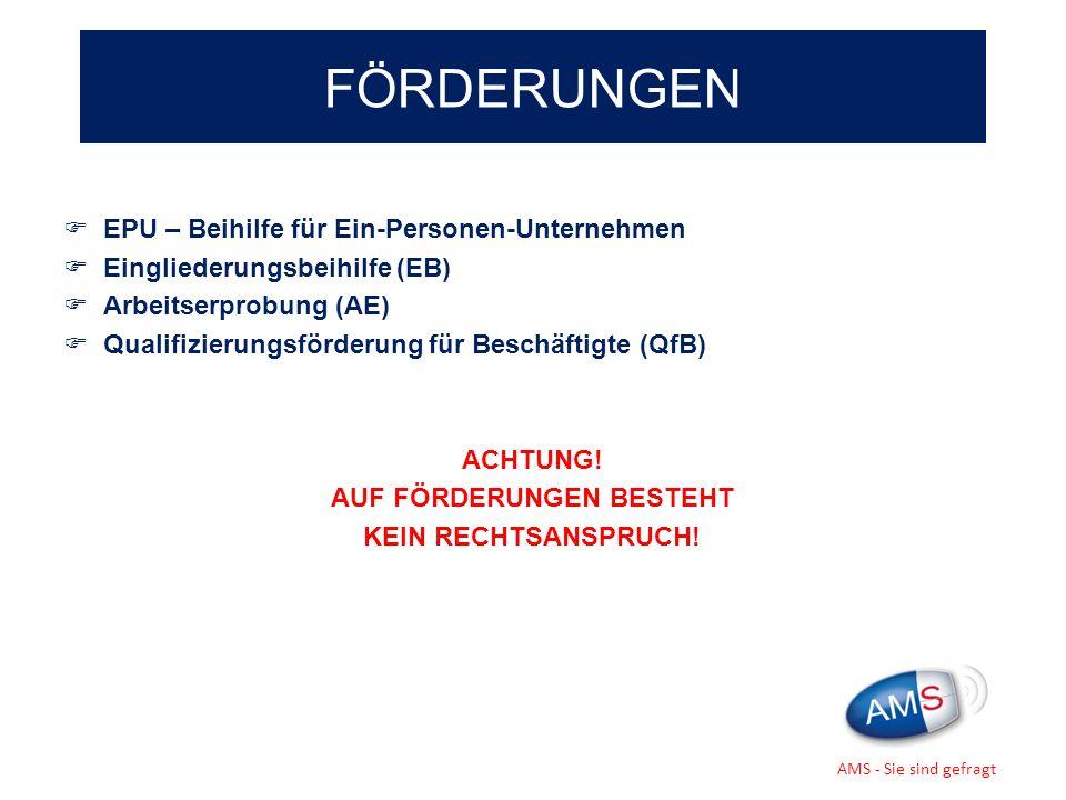 EPU – Beihilfe für Ein-Personen-Unternehmen Eingliederungsbeihilfe (EB) Arbeitserprobung (AE) Qualifizierungsförderung für Beschäftigte (QfB) ACHTUNG!