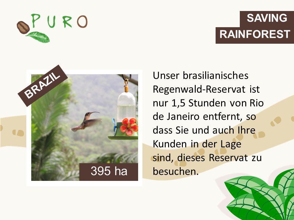 Unser brasilianisches Regenwald-Reservat ist nur 1,5 Stunden von Rio de Janeiro entfernt, so dass Sie und auch Ihre Kunden in der Lage sind, dieses Re