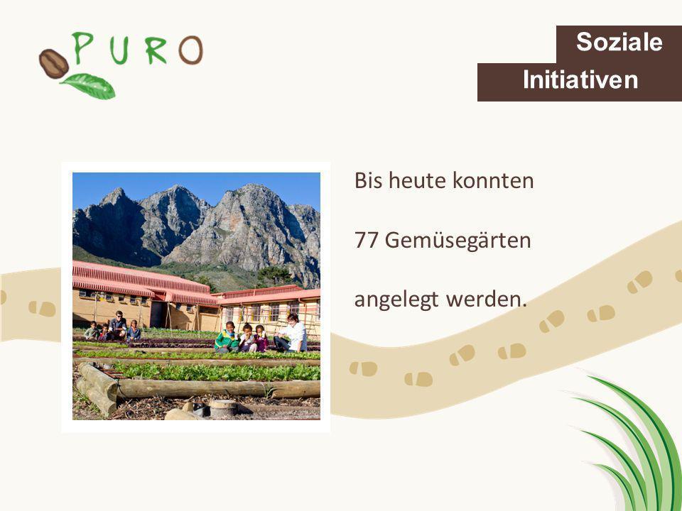 Soziale Initiativen Bis heute konnten 77 Gemüsegärten angelegt werden.