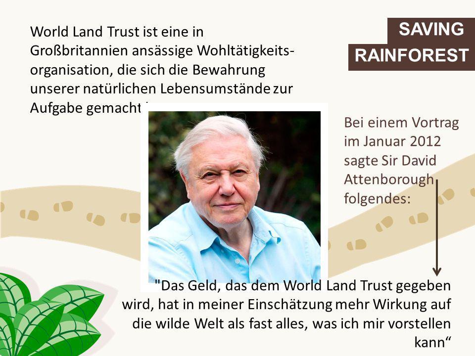 SAVING RAINFOREST World Land Trust ist eine in Großbritannien ansässige Wohltätigkeits- organisation, die sich die Bewahrung unserer natürlichen Leben