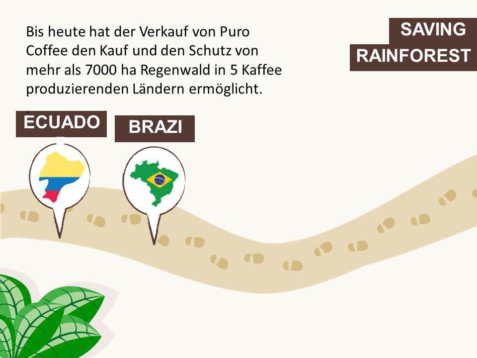 SAVING RAINFOREST ECUADO R BRAZIL COLOMBI A Bis heute hat der Verkauf von Puro Coffee den Kauf und den Schutz von mehr als 7000 ha Regenwald in 5 Kaffee produzierenden Ländern ermöglicht.