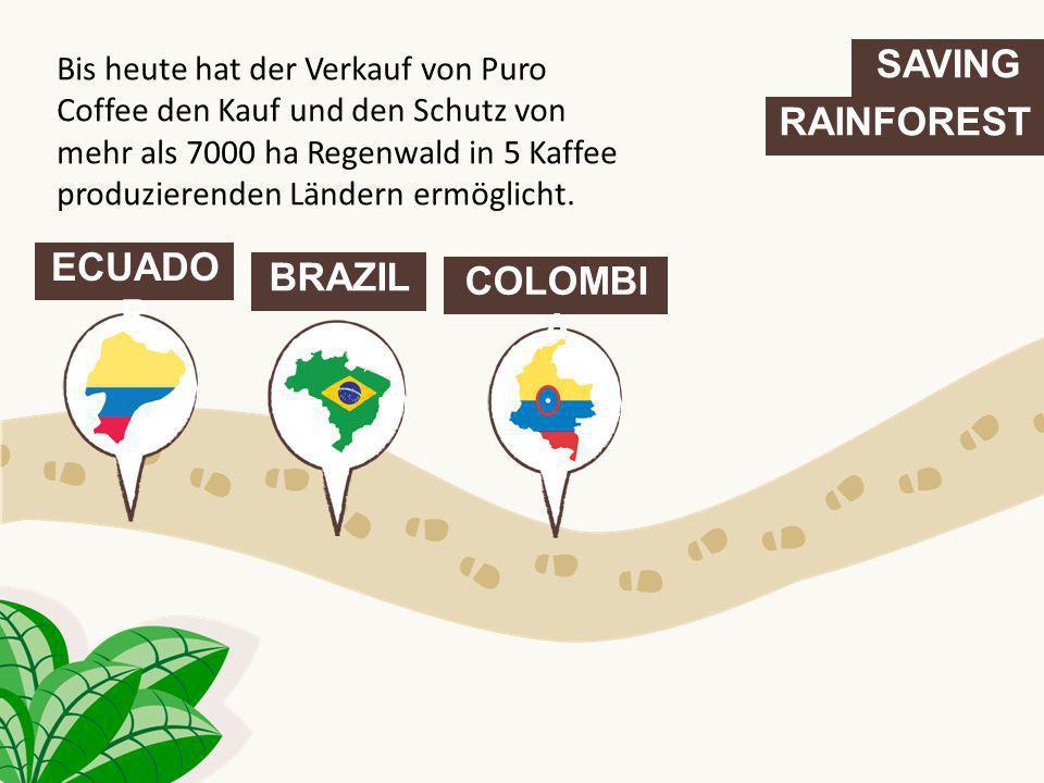 SAVING RAINFOREST ECUADO R BRAZIL COLOMBI A Bis heute hat der Verkauf von Puro Coffee den Kauf und den Schutz von mehr als 7000 ha Regenwald in 5 Kaff