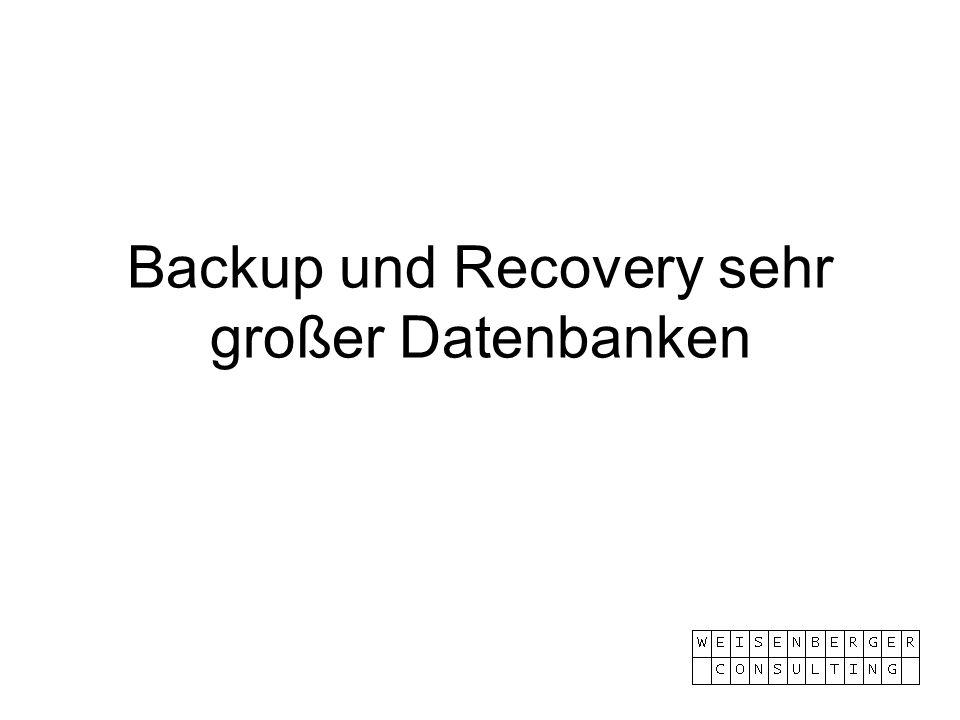 Backup und Recovery sehr großer Datenbanken