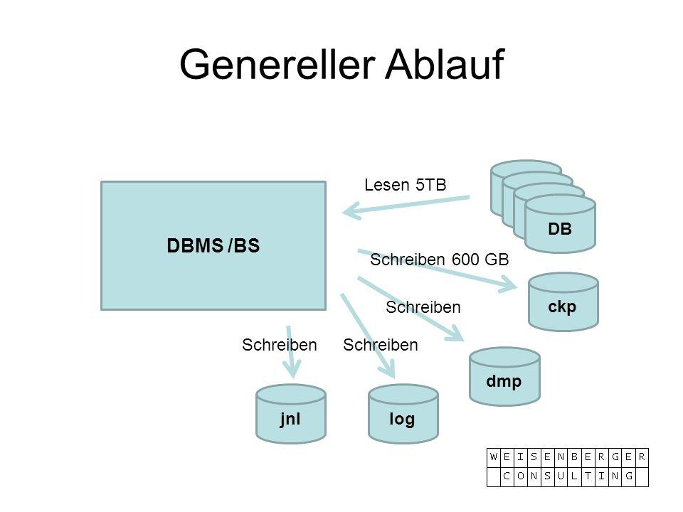 Genereller Ablauf ckp dmp log DBMS /BS DB jnl Lesen 5TB Schreiben 600 GB Schreiben