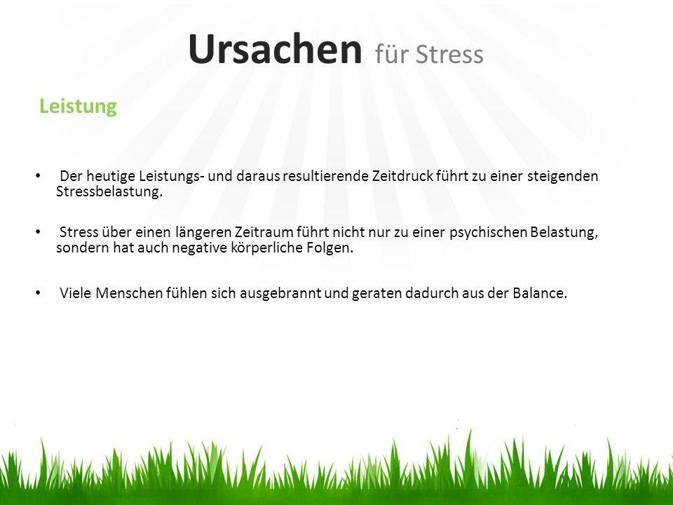 Leistung Der heutige Leistungs- und daraus resultierende Zeitdruck führt zu einer steigenden Stressbelastung. Stress über einen längeren Zeitraum führ
