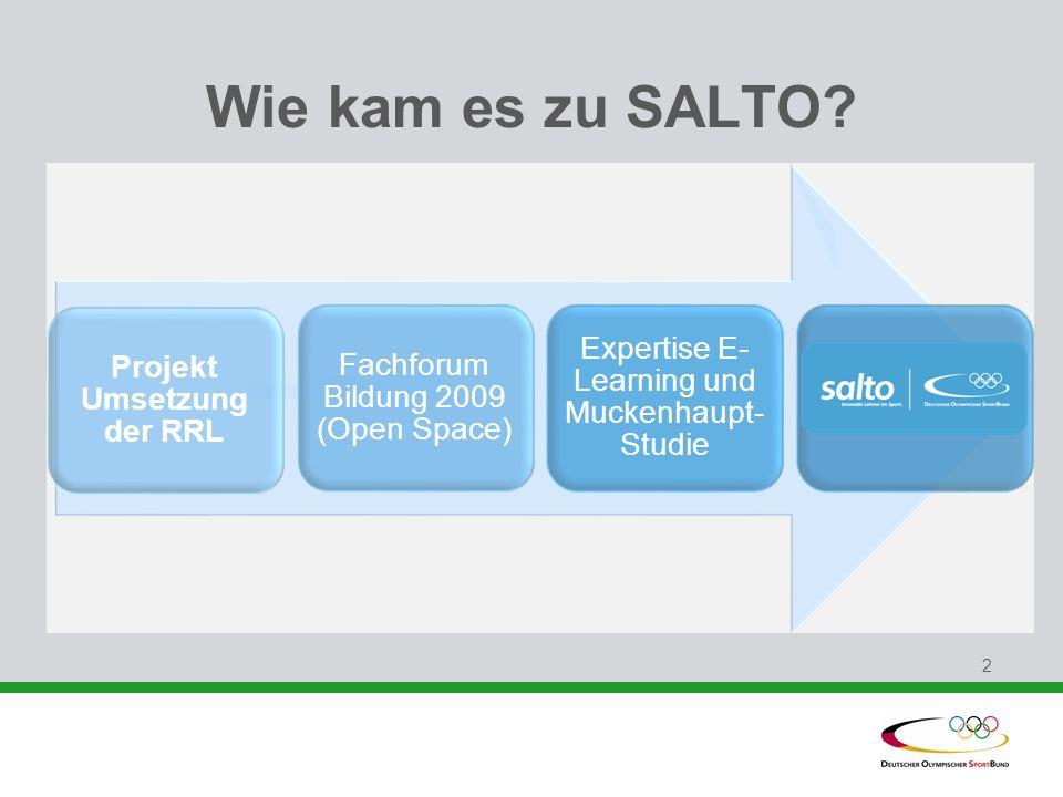 2 Wie kam es zu SALTO? Projekt Umsetzung der RRL Fachforum Bildung 2009 (Open Space) Expertise E- Learning und Muckenhaupt- Studie SALTO
