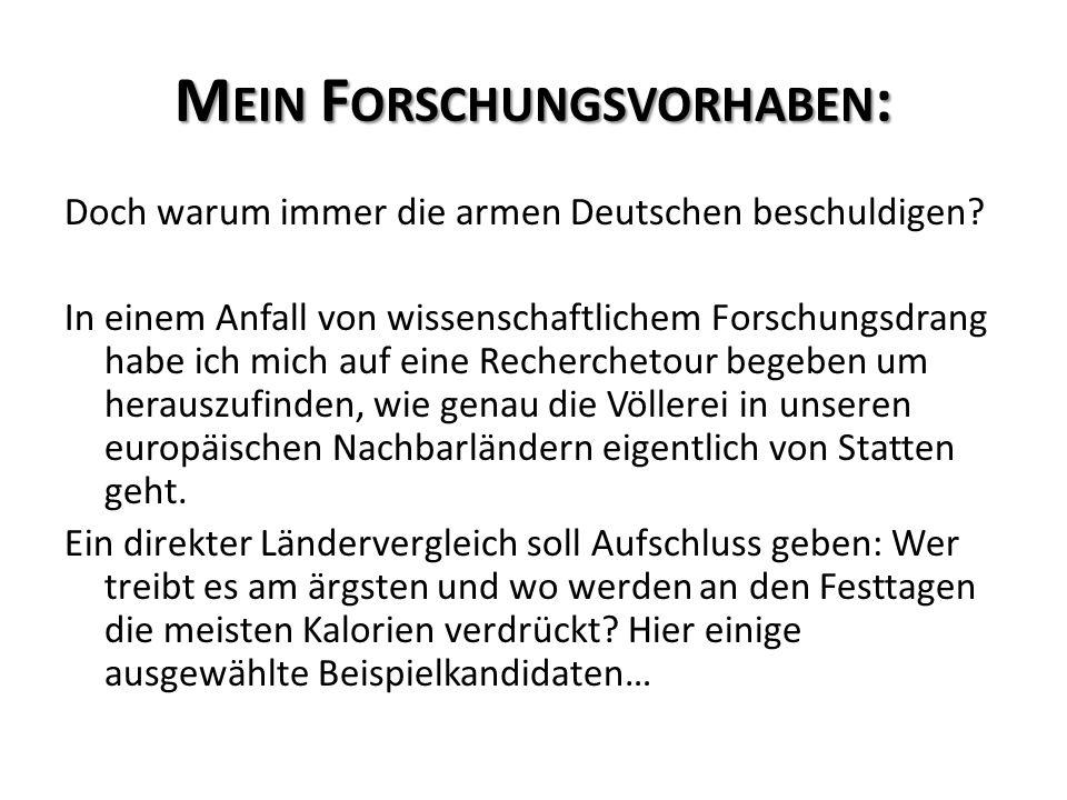 M EIN F ORSCHUNGSVORHABEN : Doch warum immer die armen Deutschen beschuldigen.
