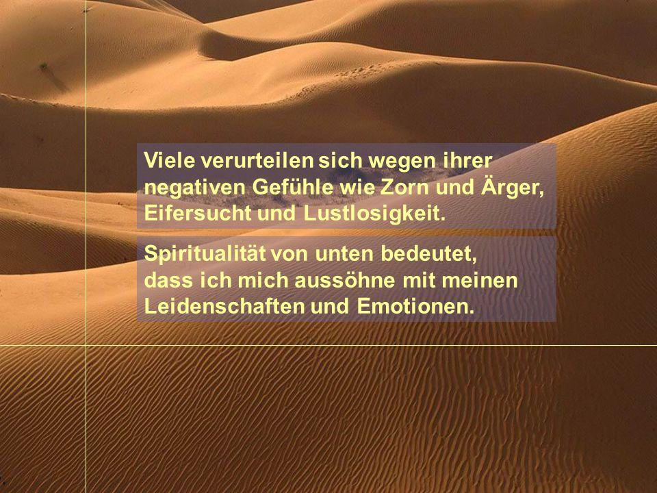 Spiritualität von unten bedeutet, dass wir Gott gerade in unseren Leidenschaften, in unseren Krank- heiten, in unseren Wunden, in unseren Umwegen, in