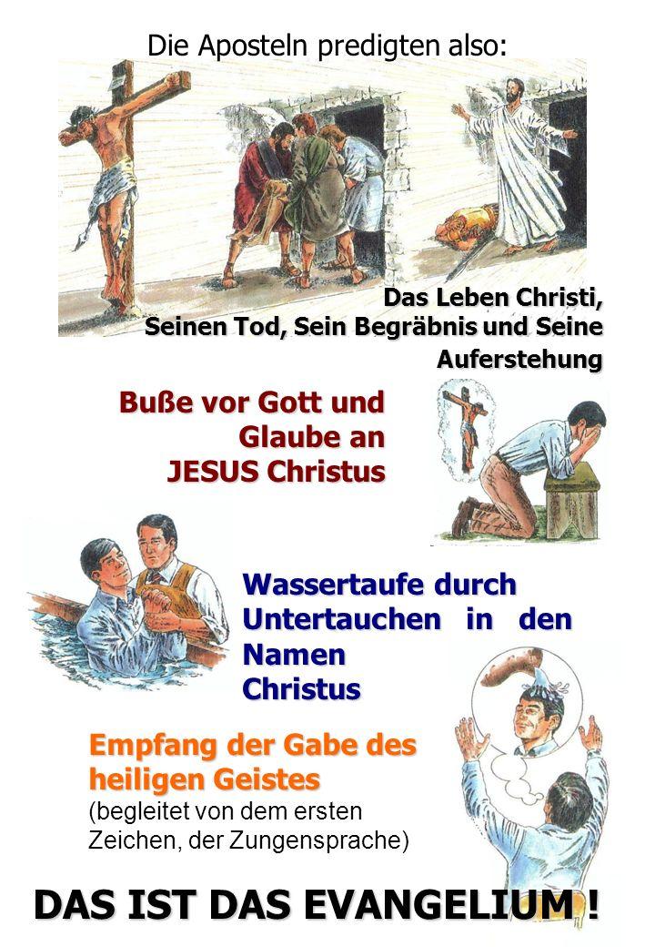 WAS SCHRIEBEN DIE APOSTEL AN DIE GLÄUBIGEN .