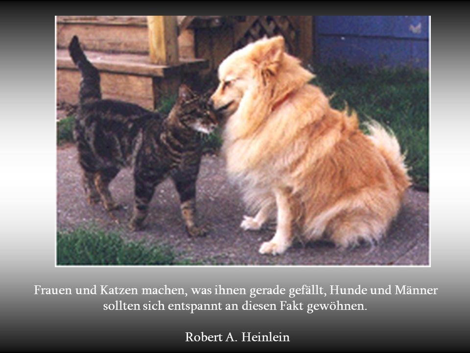Frauen und Katzen machen, was ihnen gerade gefällt, Hunde und Männer sollten sich entspannt an diesen Fakt gewöhnen.