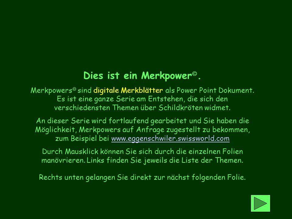 Dieses Merkpower entstand in Zusammenarbeit mit Angela Herzog, Ottikon (CH) Karl Spörri, Kemmberg (CH) Copy right U.