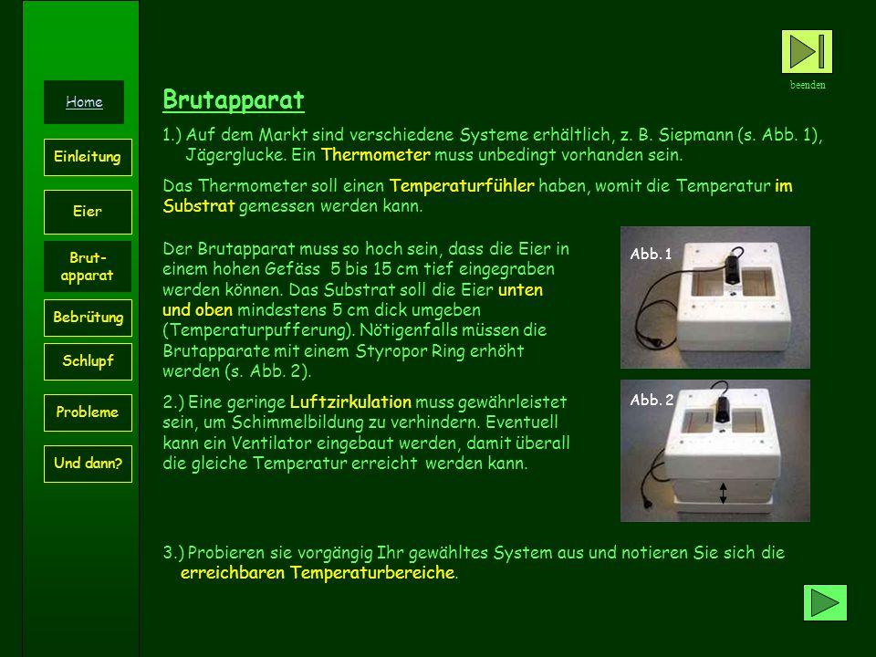 Brutapparat 1.) Auf dem Markt sind verschiedene Systeme erhältlich, z. B. Siepmann (s. Abb. 1), Jägerglucke. Ein Thermometer muss unbedingt vorhanden