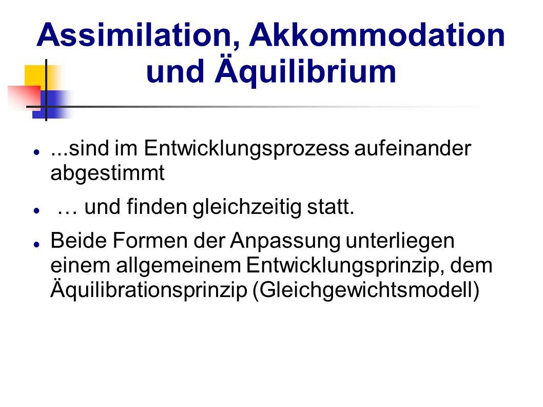 Assimilation, Akkommodation und Äquilibrium Beispiel: Wenn Kinder, die bis 10 zählen können, die Zahlen 11 bis 20 und 30 bis 100 kennen lernen, dann findet Assimilation statt.