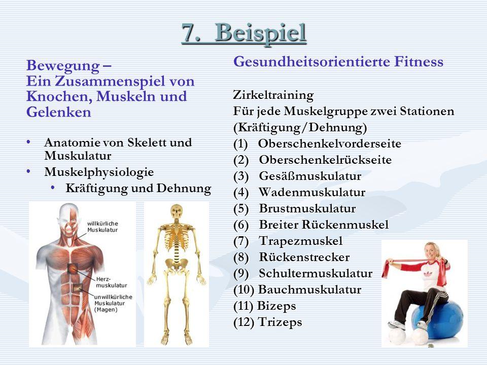 7. Beispiel Bewegung – Ein Zusammenspiel von Knochen, Muskeln und Gelenken Anatomie von Skelett und Muskulatur Muskelphysiologie Kräftigung und Dehnun