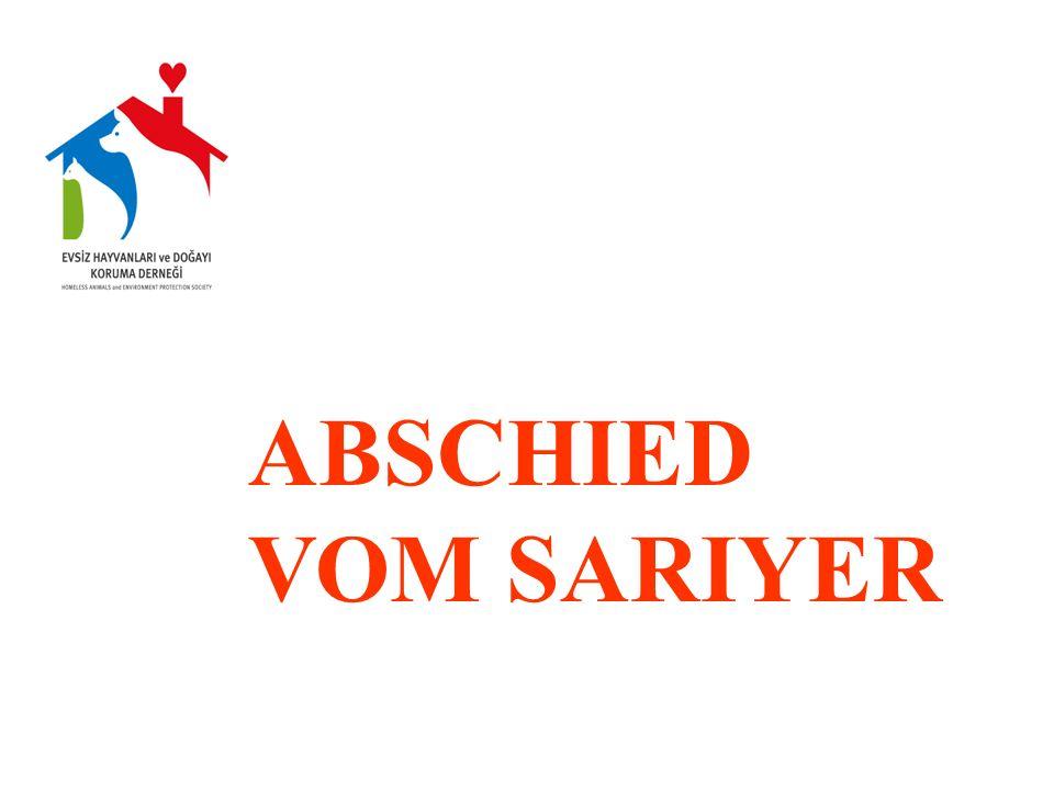 ABSCHIED VOM SARIYER