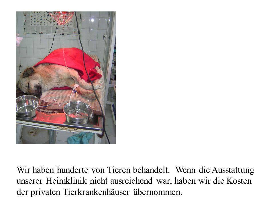 Wir haben hunderte von Tieren behandelt. Wenn die Ausstattung unserer Heimklinik nicht ausreichend war, haben wir die Kosten der privaten Tierkrankenh