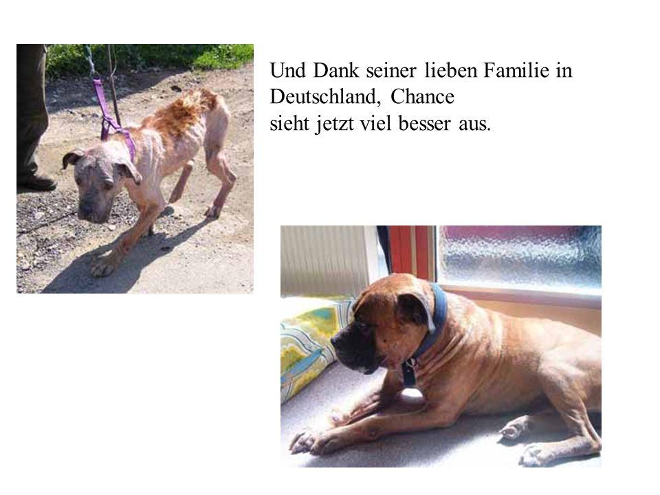 Und Dank seiner lieben Familie in Deutschland, Chance sieht jetzt viel besser aus.