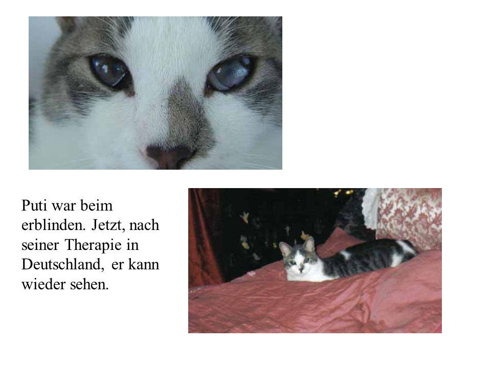 Puti war beim erblinden. Jetzt, nach seiner Therapie in Deutschland, er kann wieder sehen.