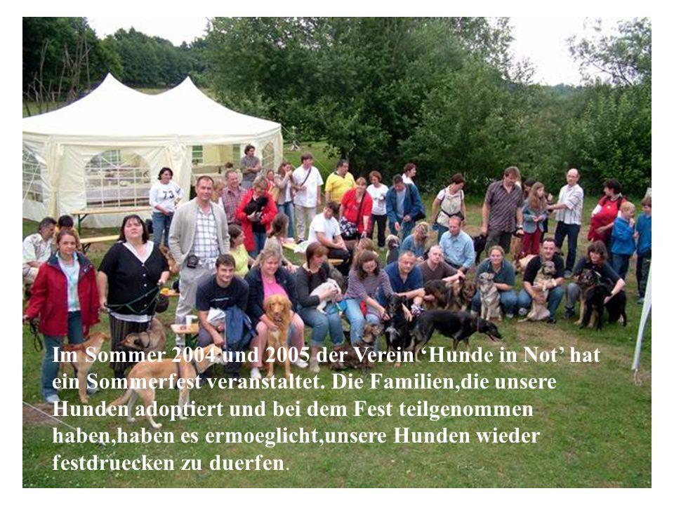 2004 ve 2005 yazında, Almanyadaki dernek, sahiplendirdiğimiz hayvanların ailelerinin birçoğunun katıldığı bir summerfest düzenledi. Hayvanlarımızla ye