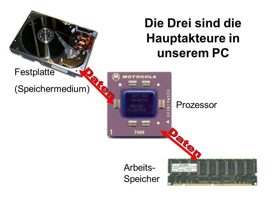 Festplatte (Speichermedium) Prozessor Arbeits- Speicher Die Drei sind die Hauptakteure in unserem PC