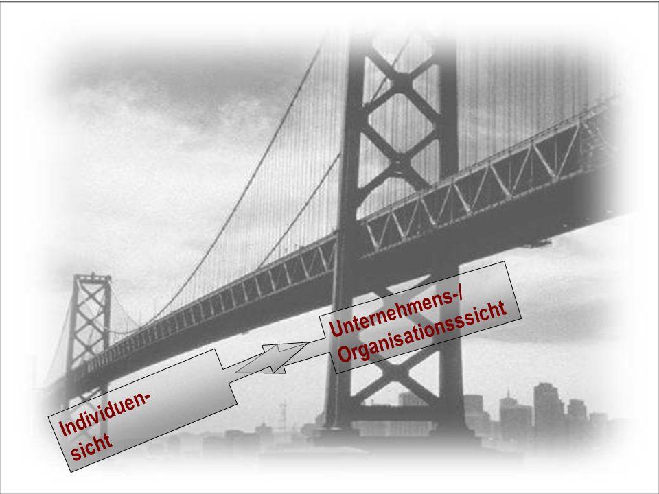 Unternehmens-/ Organisationsssicht Individuen- sicht