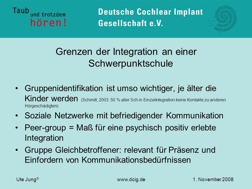 Grenzen der Integration an einer Schwerpunktschule Gruppenidentifikation ist umso wichtiger, je älter die Kinder werden (Schmitt, 2003: 50 % aller Sch
