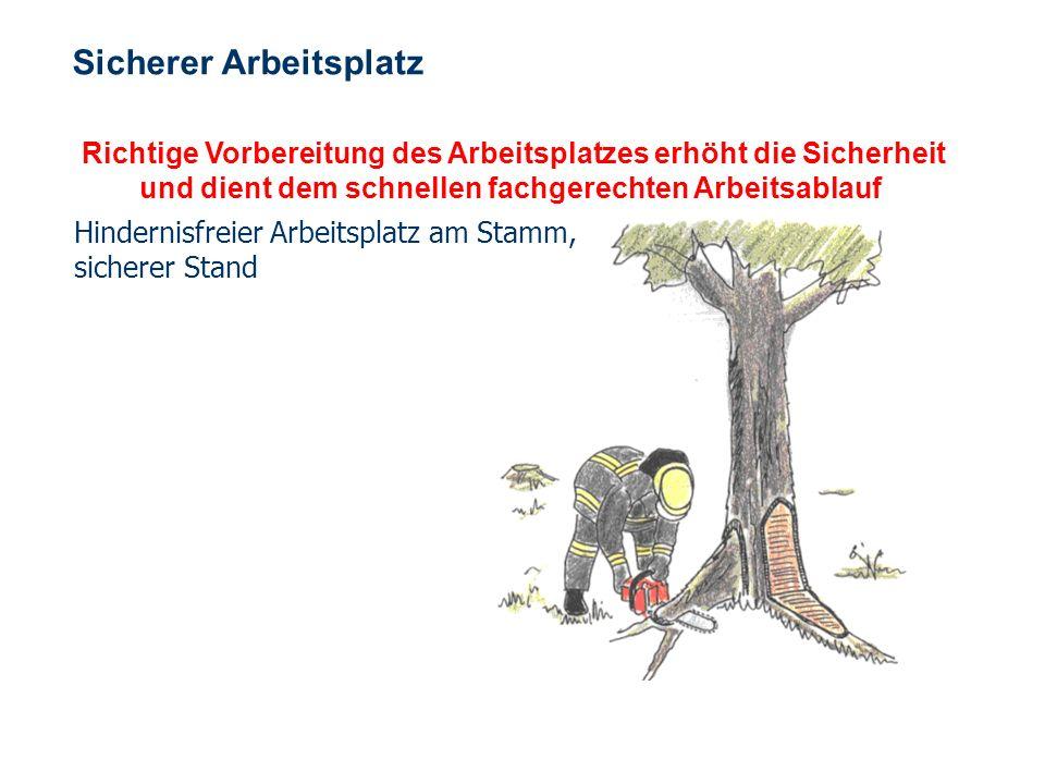 OBM Stefan Schiavulli www.ff-blofeld.de Ausbildung Feuerwehr Blofeld Folie 12 Windbruch Achtung !!! Bei Windbruch nur gut ausgebildete und besonders e