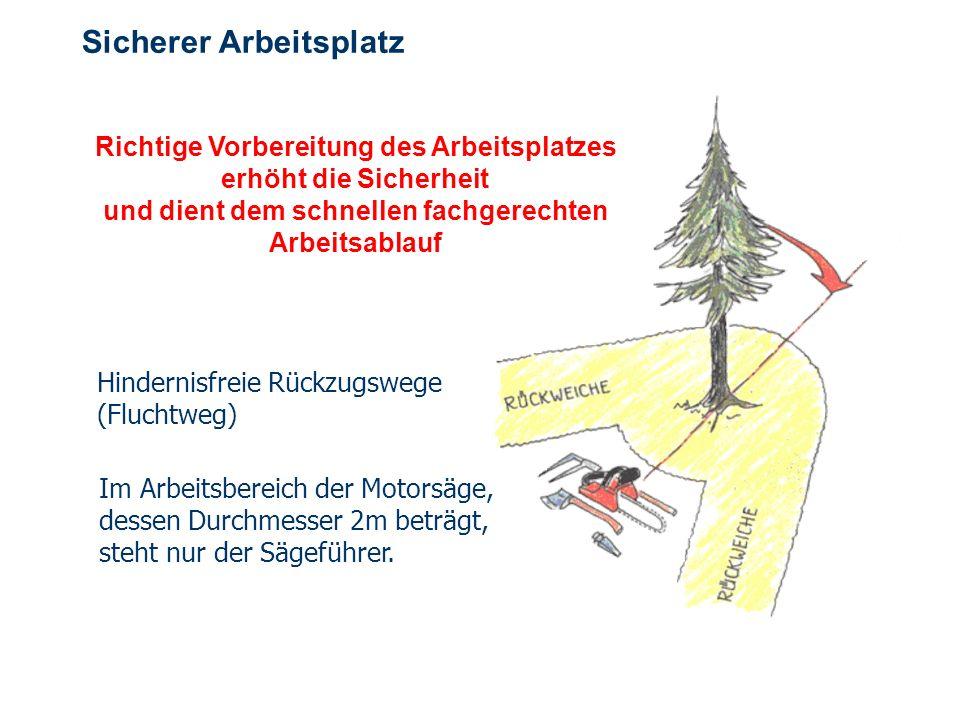 OBM Stefan Schiavulli www.ff-blofeld.de Ausbildung Feuerwehr Blofeld Folie 13 Sicherer Arbeitsplatz Richtige Vorbereitung des Arbeitsplatzes erhöht di