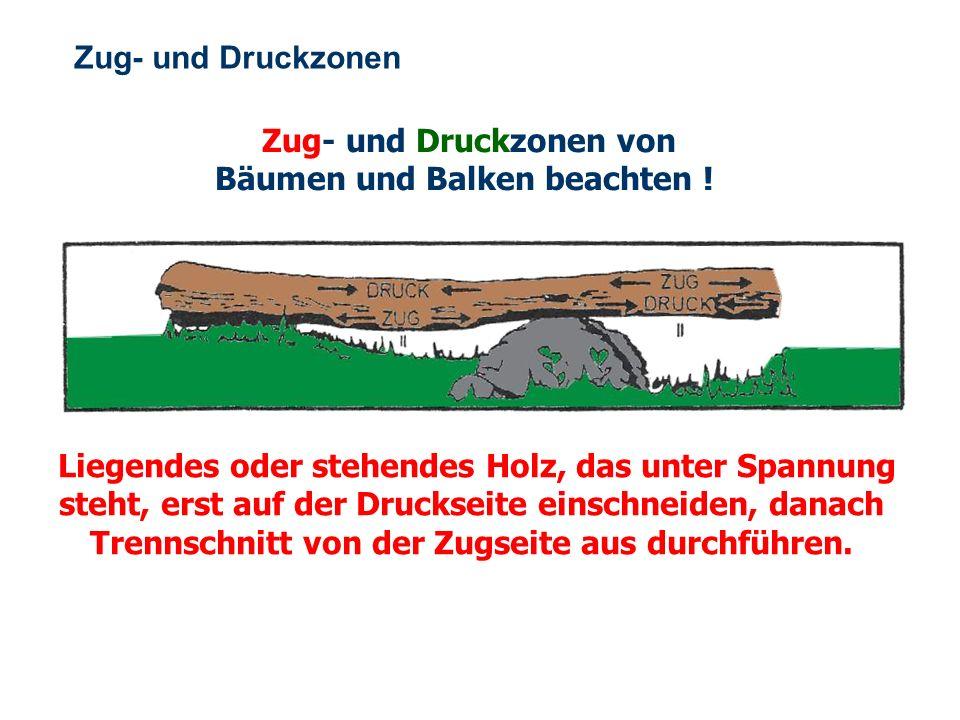 OBM Stefan Schiavulli www.ff-blofeld.de Ausbildung Feuerwehr Blofeld Folie 18 Sicherheitsvorkehrungen In Sicht- oder Rufverbindung zu anderen Personen