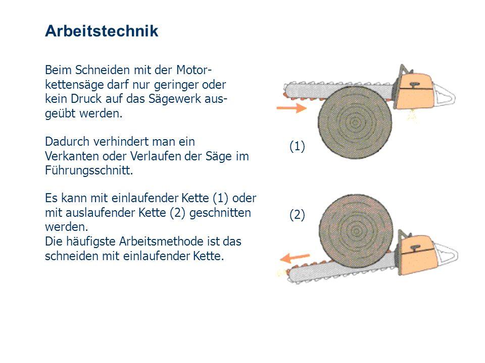 OBM Stefan Schiavulli www.ff-blofeld.de Ausbildung Feuerwehr Blofeld Folie 26 Arbeitsablauf Fallrichtung bestimmen Baum von störenden Ästen und Sträuc