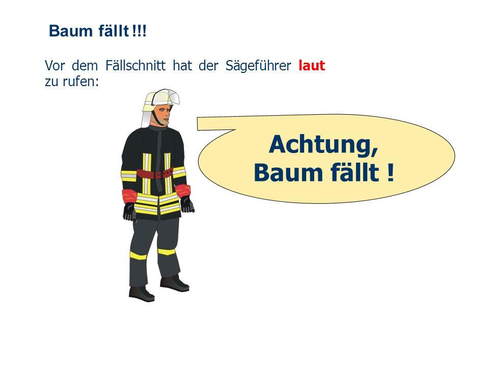 OBM Stefan Schiavulli www.ff-blofeld.de Ausbildung Feuerwehr Blofeld Folie 32 Splintschnitt Nach dem Anlegen des Fallkerbs sind rechtwinklig dazu an b