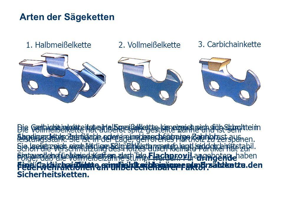 OBM Stefan Schiavulli www.ff-blofeld.de Ausbildung Feuerwehr Blofeld Folie 4 Arten der Sägeketten 1.
