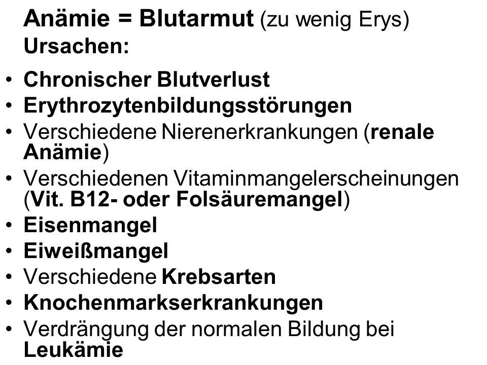 Anämie = Blutarmut (zu wenig Erys) Ursachen: Chronischer Blutverlust Erythrozytenbildungsstörungen Verschiedene Nierenerkrankungen (renale Anämie) Ver