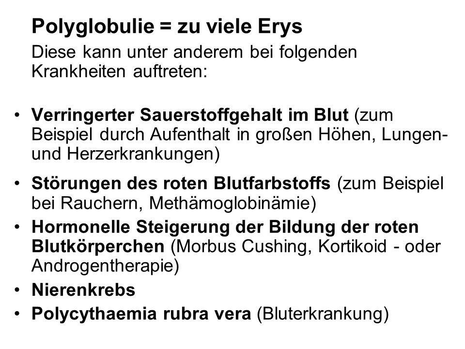 Polyglobulie = zu viele Erys Diese kann unter anderem bei folgenden Krankheiten auftreten: Verringerter Sauerstoffgehalt im Blut (zum Beispiel durch A