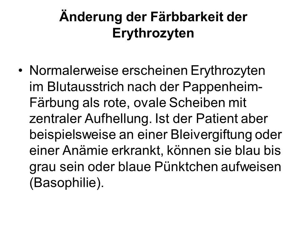 Änderung der Färbbarkeit der Erythrozyten Normalerweise erscheinen Erythrozyten im Blutausstrich nach der Pappenheim- Färbung als rote, ovale Scheiben
