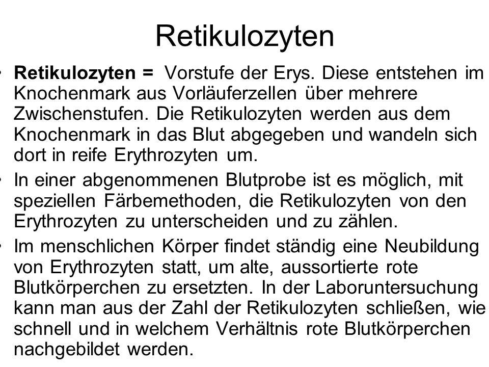 Retikulozyten Retikulozyten = Vorstufe der Erys. Diese entstehen im Knochenmark aus Vorläuferzellen über mehrere Zwischenstufen. Die Retikulozyten wer