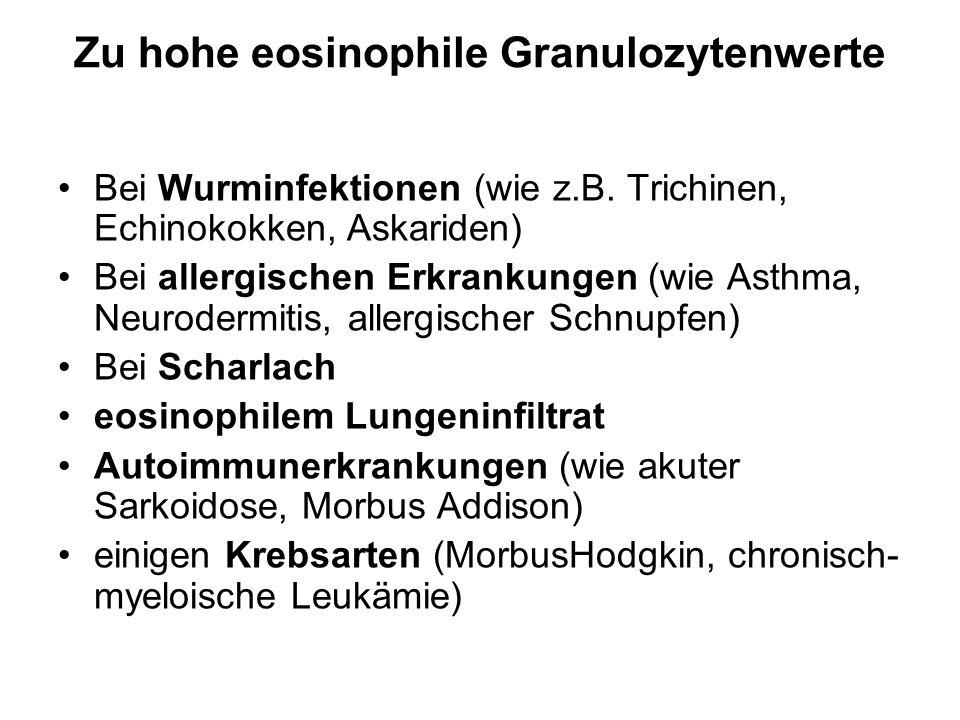 Zu hohe eosinophile Granulozytenwerte Bei Wurminfektionen (wie z.B. Trichinen, Echinokokken, Askariden) Bei allergischen Erkrankungen (wie Asthma, Neu