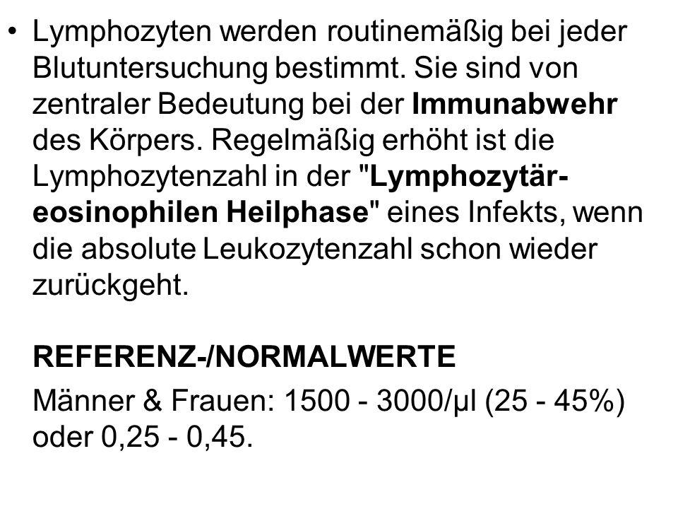 Lymphozyten werden routinemäßig bei jeder Blutuntersuchung bestimmt. Sie sind von zentraler Bedeutung bei der Immunabwehr des Körpers. Regelmäßig erhö