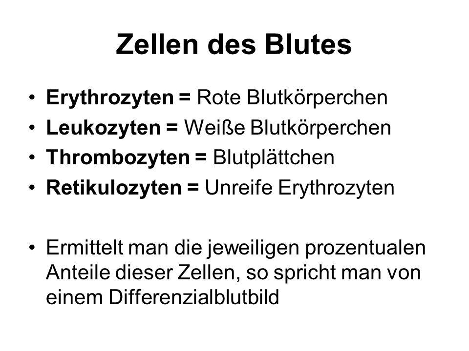 Zellen des Blutes Erythrozyten = Rote Blutkörperchen Leukozyten = Weiße Blutkörperchen Thrombozyten = Blutplättchen Retikulozyten = Unreife Erythrozyt